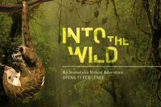 Into the Wild: An Immersive Adventure at ArtScience Museum in Singapore...
