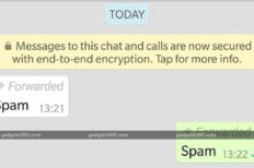 WhatsApp Starts Testing Labeling Forwarded Messages